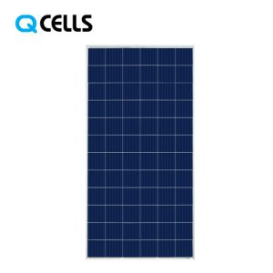 Q-Cells-Poly-Painel-Solar-330W